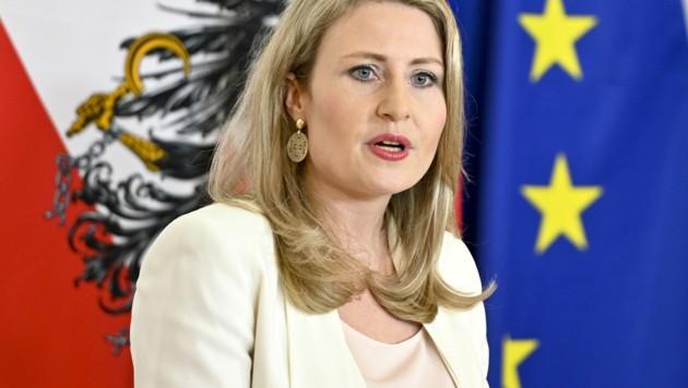 Susanne Raab ist nun auch Familienministerin (Bild: APA/Herbert Neubauer)
