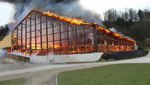 Teile der Reitanlage Bergmühle in Leibnitz brannten bis auf die Grundmauern nieder. (Bild: Stadtfeuerwehr Leibnitz)