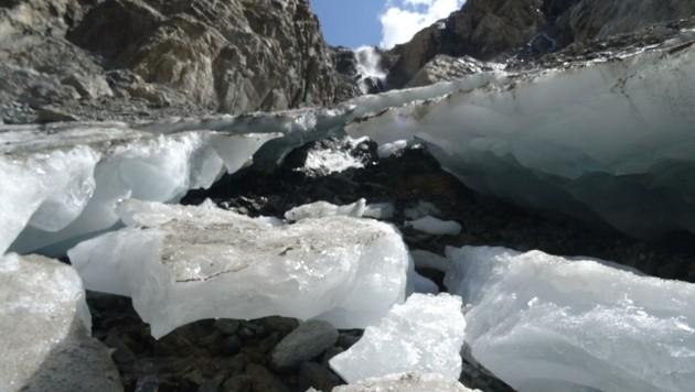 Der Schweikertferner unter der Rofelewand in den Ötztaler Alpen verlor dramatisch an Länge – insgesamt 86,3 Meter! (Bild: Markus Strudl)