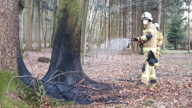 Die freiwillige Feuerwehr Eugendorf löschte am Dienstag einen Flurbrand. (Bild: Freiwillige Feuerwehr Eugendorf)