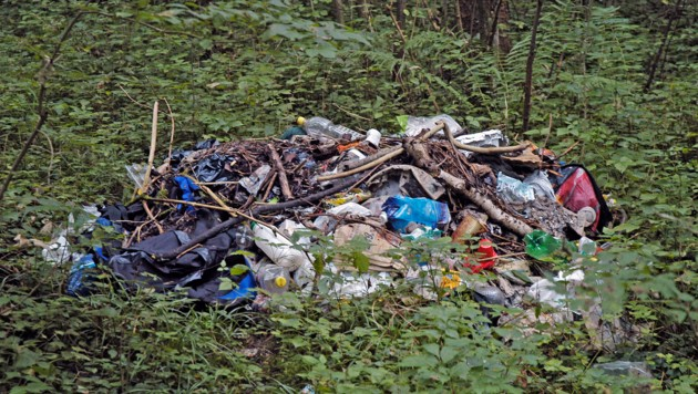Landesweit werden der Naturschutzabteilung des Landes Verstöße gemeldet. (Bild: Land Salzburg / Andreas Thomasser)