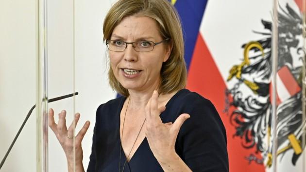 Klimaschutzministerin Leonore Gewessler (Grüne) (Bild: APA/HANS PUNZ)