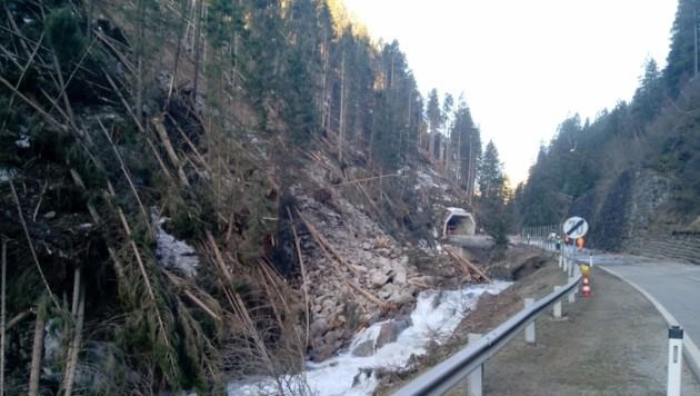 Durch den Felssturz wurde die Schwarzach aufgestaut - die Böschung der L25 Defereggentalstraße wurde unterspült. (Bild: Landesgeologie/Außerlechner)