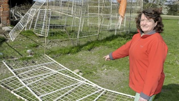 Claudia Schindecker mit dem zerstörten Gatter (Bild: Manfred Fesl)
