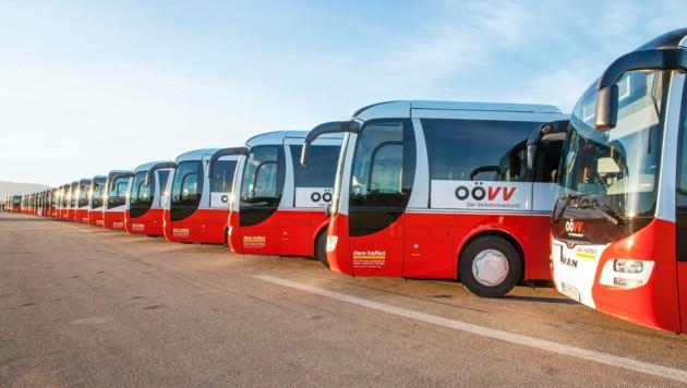 Der Fuhrpark der OÖVV-Busse (Bild: OÖVV)