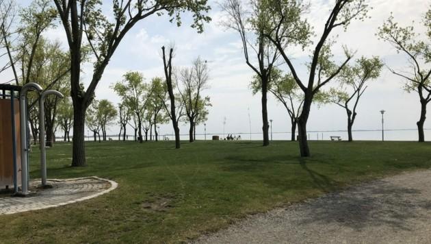 Die Zutrittsbeschränkungen zu Gewässern im Burgenland haben für beinahe leere Seebader am Neusiedler See gesorgt. (Bild: APA/MARIO MICHLITS)