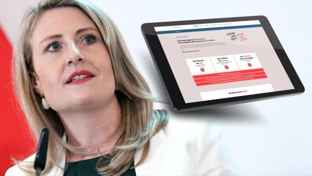 Ministerin Susanne Raab (ÖVP) (Bild: APA/Roland Schlager, oesterreich.gv.at, stock.adobe.com, krone.at-Grafik)