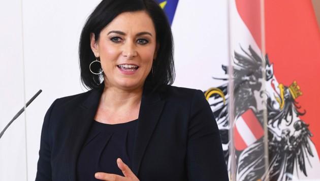 Elisabeth Köstinger (ÖVP) (Bild: APA/HELMUT FOHRINGER)
