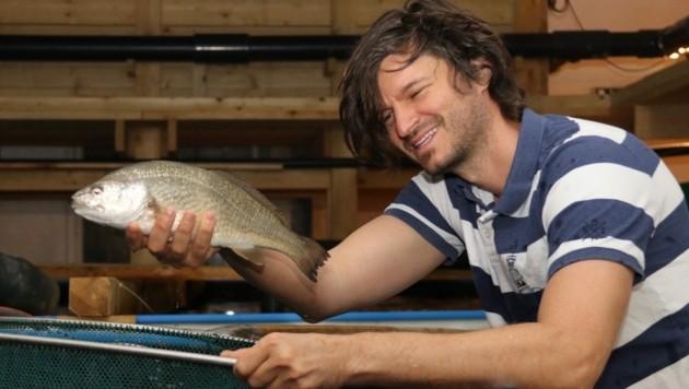 Michael Wesonig kennt sich aus mit frischen Fischen (Bild: Christian Jauschowetz)