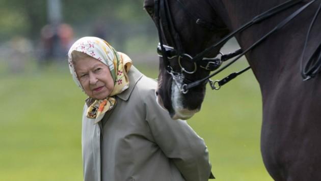 Queen Elizabeth II. liebt Pferde. (Bild: www.PPS.at)