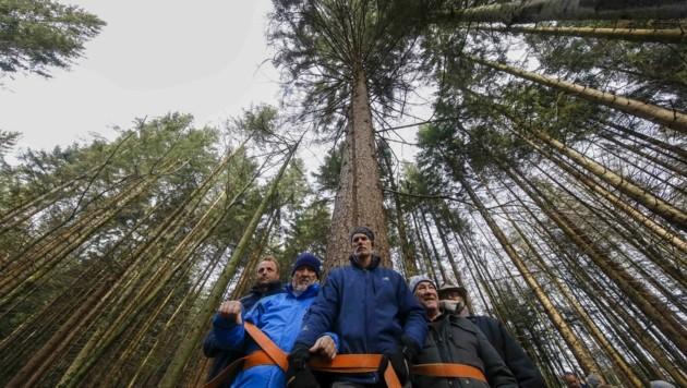 Aktivisten ketteten sich sogar aus Protest an Bäume (Bild: Tschepp Markus)