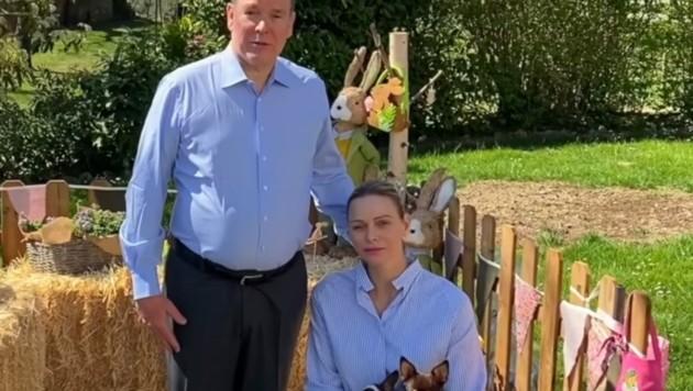 Mit Fürstin Charlene sendete Albert zu Ostern Grüße aus dem Garten . (Bild: facebook.com/palaismonaco)