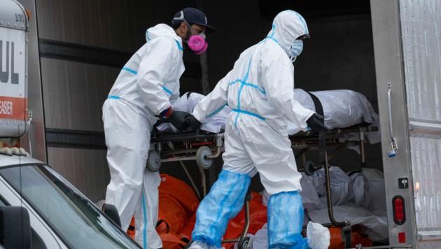 Derzeit ist noch unklar, wie viele der in den Kühl-Lkw entdeckten Leichen im Zusammenhang mit einer Infektion mit dem Coronavirus stehen. (Bild: AP)