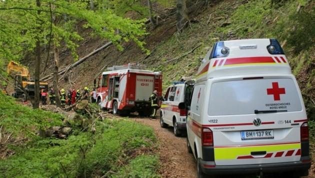 Die Freiwillige Feuerwehr Thörl und das Rote Kreuz standen im Einsatz. (Bild: Fladl/FF-Thörl)