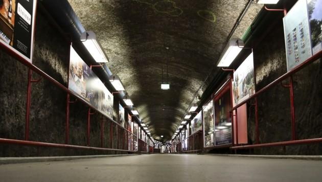 Kultur hofft auf Licht am Endes des Tunnels und auf Ansagen (Bild: Tröster Andreas)