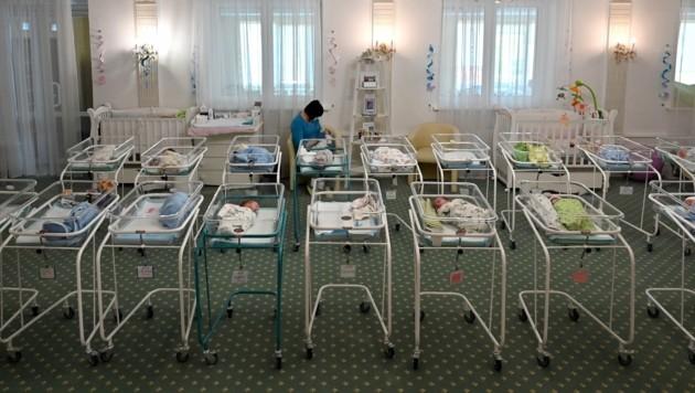 Statt bei ihren Familien zu sein, müssen diese Babys noch von Krankenschwestern in der Ukraine versorgt werden. (Bild: AFP )
