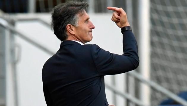 Hertha-Coach Bruno Labbadia (Bild: AP)