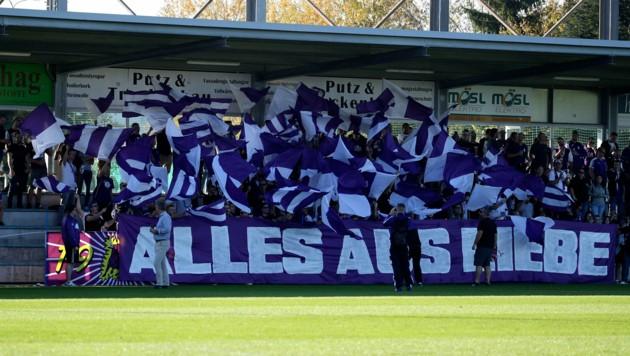 Jubeln die Austria-Fans bald wieder in der 2. Liga? (Bild: Andreas Tröster)