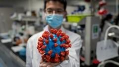 Ein plastisches Modell des neuartigen Coronavirus in einem Labor in China (Bild: AFP)