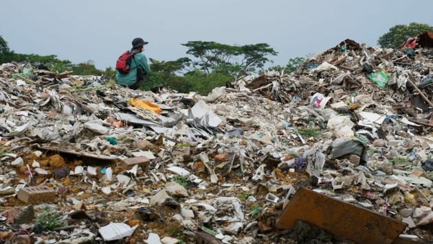 (Bild: © Nandakumar S. Haridas/Greenpeace)