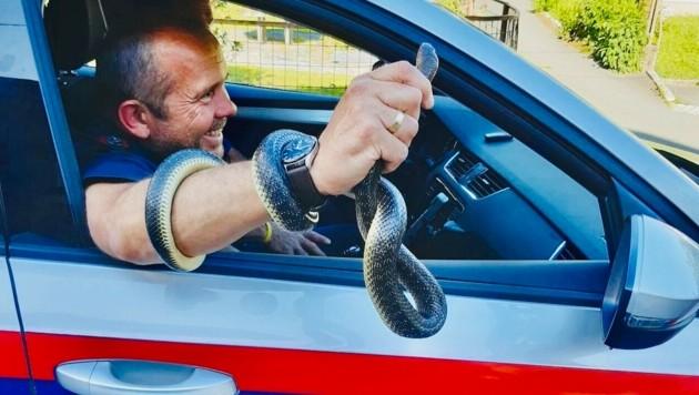 Andreas Kulterer von der Polizei kennt sich mit Schlangen aus. (Bild: Polizei Hermagor)