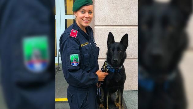 """Polizeispürhund """"Domina"""" nahm rasch die Fährte auf. (Bild: LPD Wien, krone.at-Grafik)"""