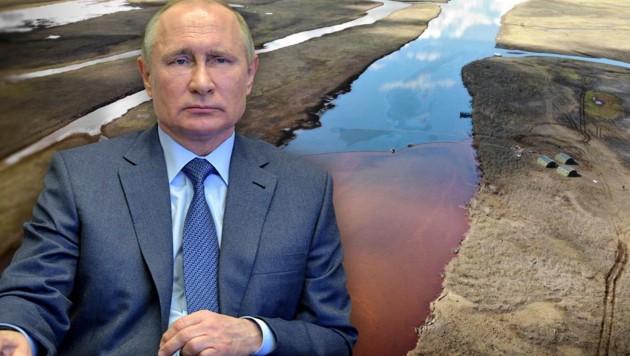Russlands Präsident Wladimir Putin forderte einen der reichsten Männer des Landes dazu auf, für den Milliiarden-Schaden aufzukommen. (Bild: AFP, Greenpeace, krone.at-Grafik)