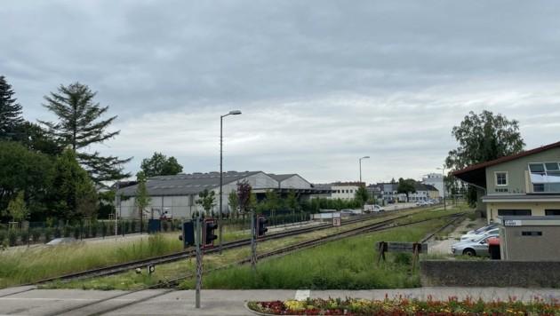 Hier kaufte die Bürgermeistergattin ein Grundstück (Bild: Wenzel Markus)