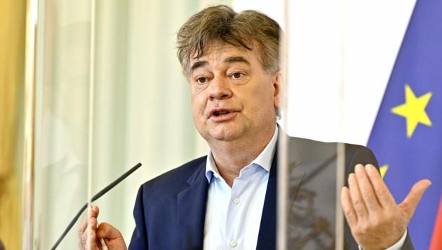 Vizekanzler Werner Kogler (Grüne) (Bild: APA/Hans Punz)