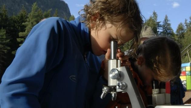 Kinder können die Natur mit dem Mikroskop erforschen (Bild: NP Ötztal)