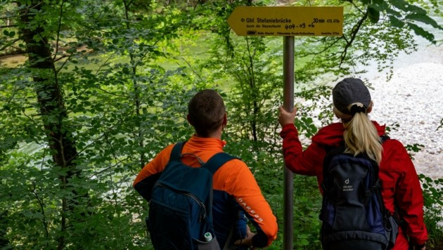 Wanderer aufgepasst - sogar im Gebirge lauern jetzt Zecken! (Bild: Kerschbaummayr Werner)