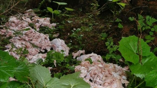 Dieses Fleisch wurde illegal bei einem Forstweg entsorgt. (Bild: LPD Tirol)