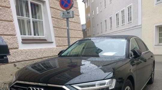 Der Dienstwagen von Ministerin Susanne Raab parkte neben dem Verbotsschild. (Bild: Antonio Lovric)