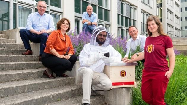 """SuperBee Keeper"" soll Vitalität der Honigbienen steigern (Bild: NLK Burchhart)"