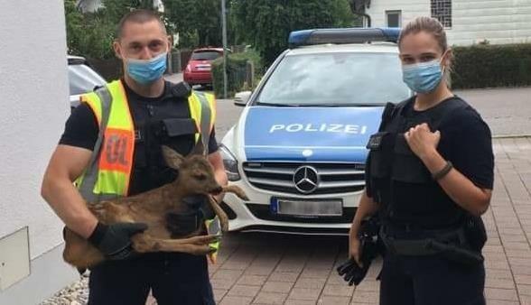 (Bild: Bundespolizeidirektion München)