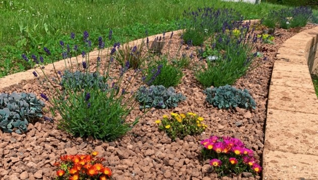 Der Garten ist öffentlich und wird von Schülern gepflegt. (Bild: Klimaparadies-Lavanttal)