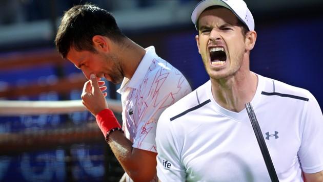 Novak Djokovic (li.) und Andy Murray (Bild: AFP, GEPA, krone.at-Grafik)