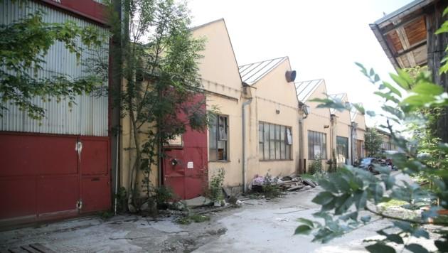 Reisinger-Gründe: Auf dem maroden Areal soll ein moderner Wohnkomplex entstehen. (Bild: Tröster Andreas)