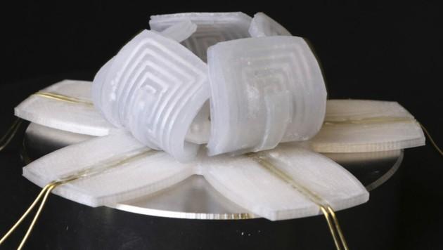 Anstatt Kupferdraht und Eisen bilden ein elastischer Werkstoff und Flüssigmetall die Grundzutaten des Aktuators, den die Wissenschaftler in robotischen Anwendungen demonstrieren. Das Team zeigt mit einer Art Robo-Blume, dass sich ihre aus fünf einzeln steuerbaren Blütenblättern bestehende Knospe in wenigen Millisekunden öffnen und schließen kann. (Bild: APA/MICHAEL DRACK/GUOYONG MAO)