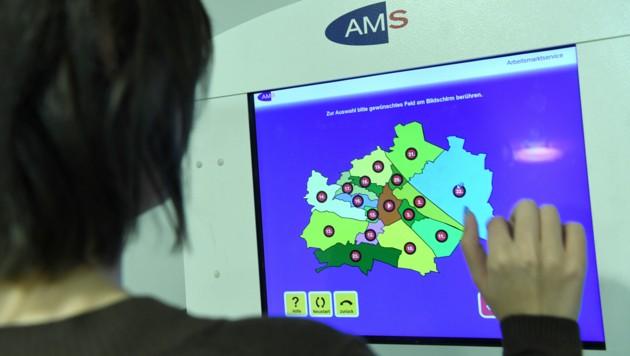 Eine Computer-Station in einer Geschäftsstelle des AMS-Wien. (Bild: APA/ROLAND SCHLAGER)