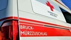 (Bild: Rotes Kreuz Bruck-Mürzzuschlag/Leodolter )