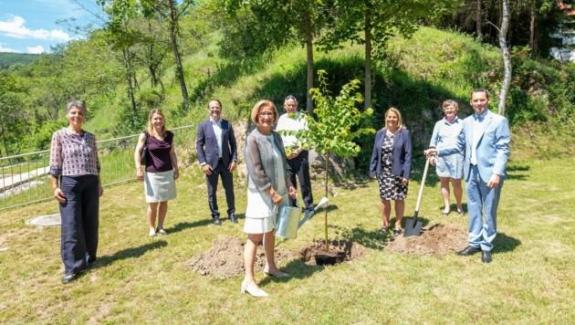 Heilwald: Turbo für Touristen