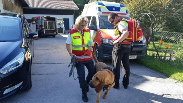 Bestens ausgebildete Hunde suchen nach der Vermissten - bislang vergeblich
