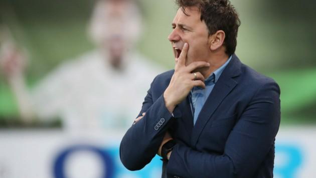 KSV-Trainer Ibrakovic uind seine Falken sind im Aufwind. (Bild: GEPA)