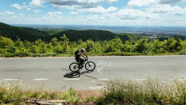 Radfahren am Berg Sljeme - Ein Wald-Abenteuer auf zwei Rädern
