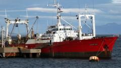 """57 der 61 Besatzungsmitglieder des Fischkutters """"Echizen Maru"""" wurden positiv auf das neuartige Coronavirus getestet. (Bild: Wikipedia/GNSri (Creative Commons))"""