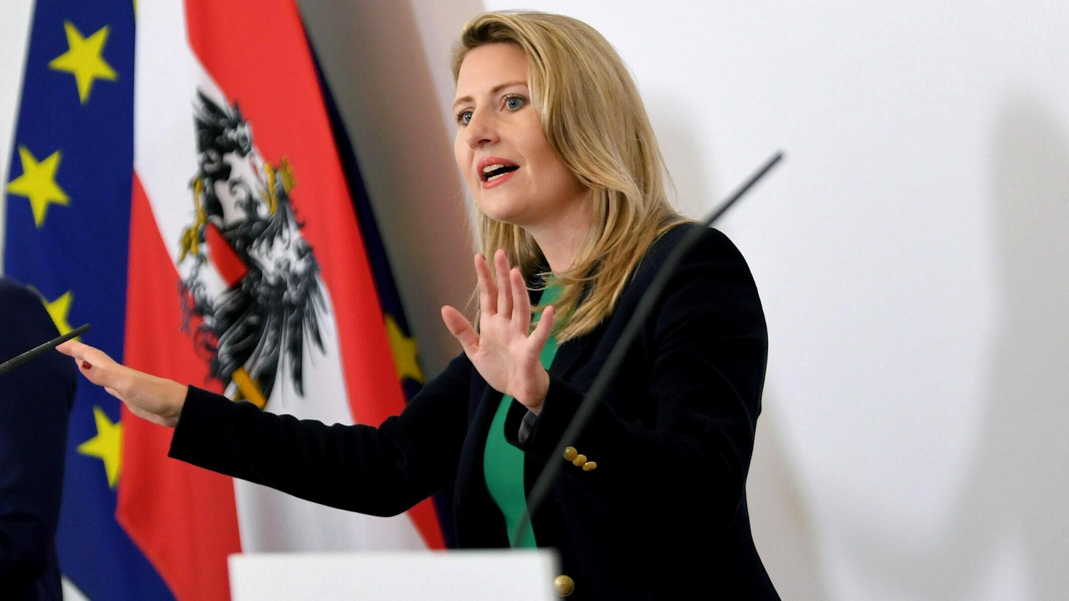 Dokumentationsstelle nimmt Extremismus ins Visier | krone.at