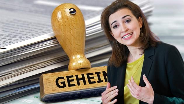 Justizministerin Alma Zadic (Grüne) will digitalisierte Strafakte im Kampf gegen Maulwürfe einsetzen. (Bild: stock.adobe.com, APA/GEORG HOCHMUTH, krone.at-Grafik)