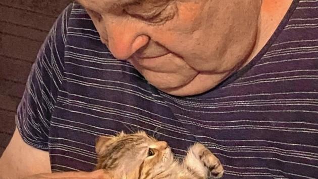 """Katzerl """"Niki"""" aus dem Tierheim Arche Noah hat ihrem neuen Besitzer viel Lebensfreude gebracht."""