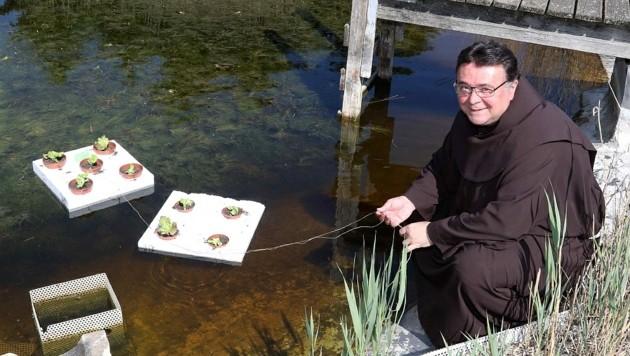 """Pater Thomas Lackner zeigt, wie einfach die Salataufzucht im Klosterteich funktioniert: """"Wir schlagen zwei Fliegen mit einer Klappe."""" (Bild: Reinhard Judt)"""